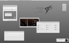 Bull Suite windows XP theme