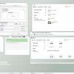 Invoice Visual Style for windows xp theme
