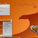 TallyHawk theme for windows xp