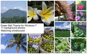 Green Bali Windows Theme